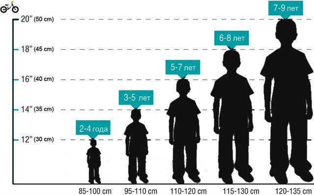 Как выбрать размер колеса для детского велосипеда